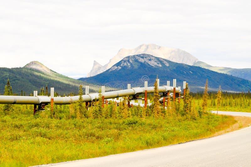 Wild Alaskan pipeline stock photography