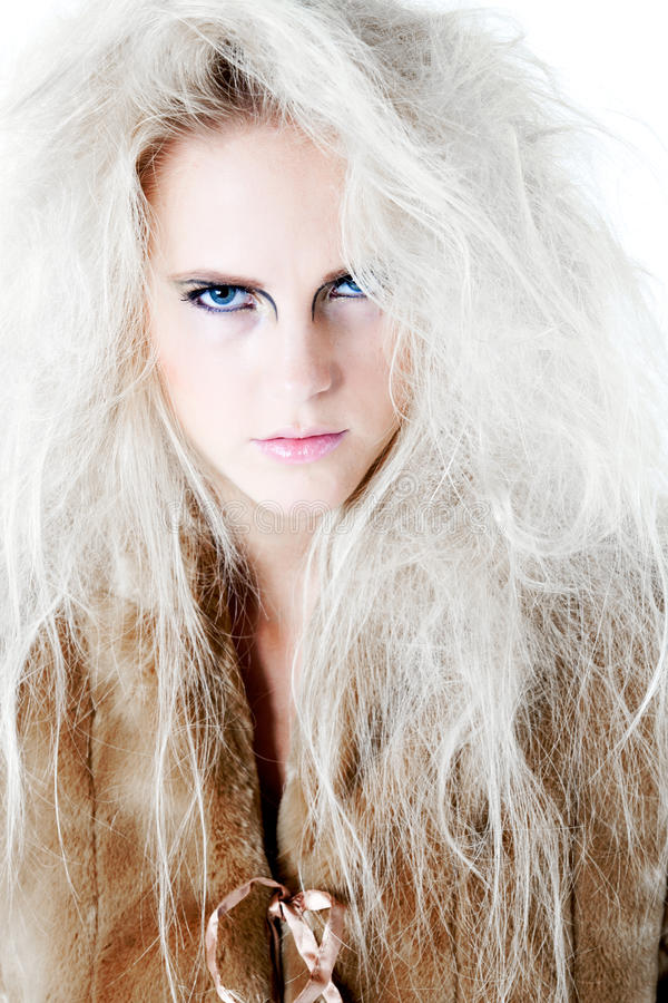 Free Wild Angry Fierce Look In Fur At You Stock Images - 10506634
