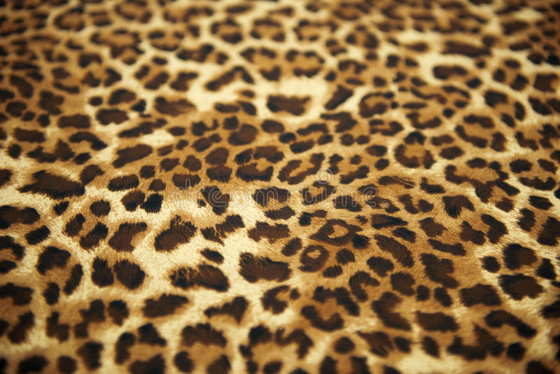 Wild animal pattern. Background or texture stock photos
