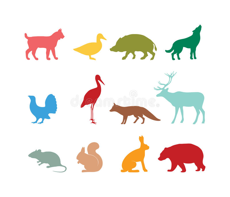 Wild animal silhouette and wild animal symbols. Predator silhouette. Wild life animal silhouette. Colored silhouette wild animal zoo vector stock illustration
