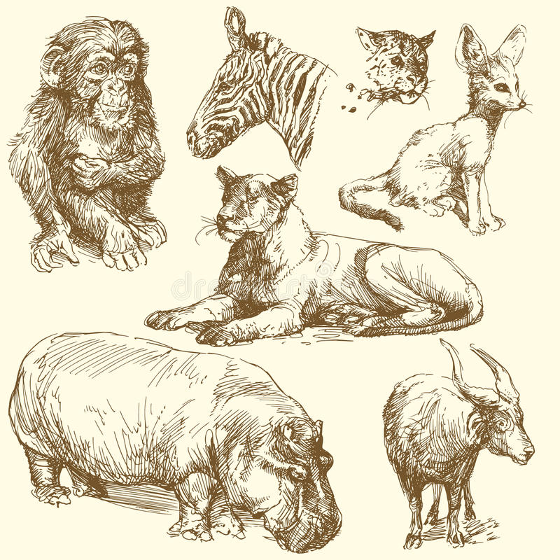 Download Wild animals stock vector. Image of safari, nature, design - 25892036