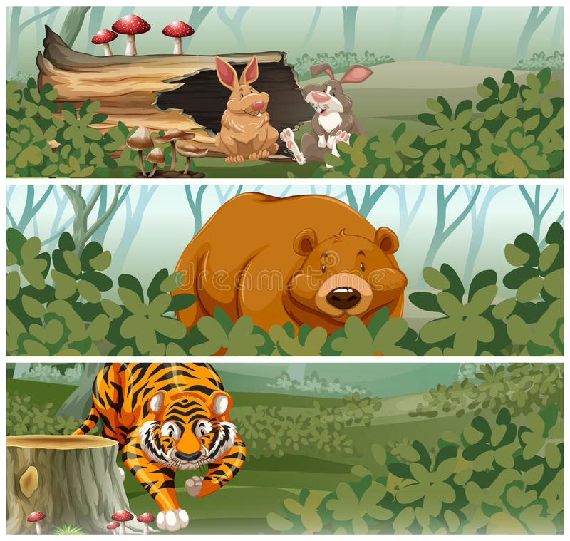 Wild animals in the jungle stock illustration