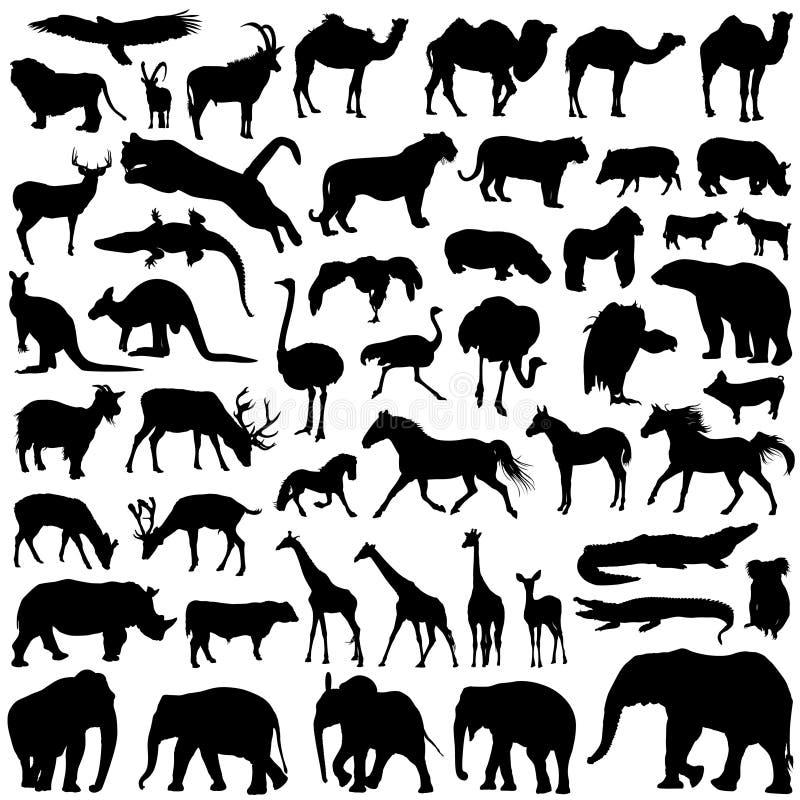 Wild animals silhouettes royalty free illustration