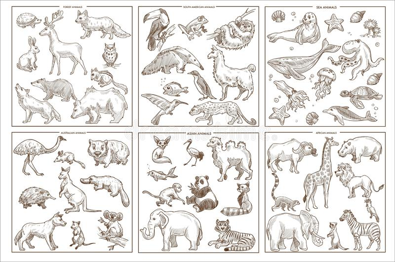 Wild animals species sketch icons birds mammals and amphibians vector illustration
