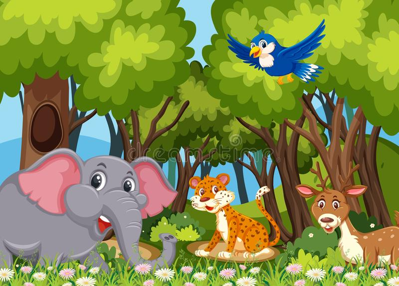 Wild animals in the woods royalty free illustration