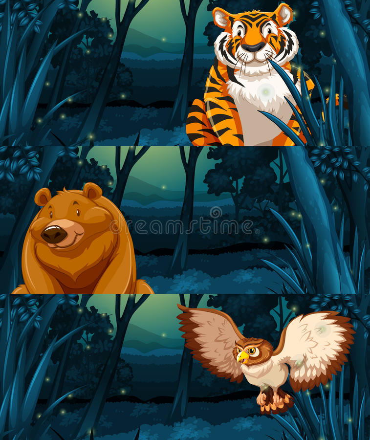 Wild animals in the woods at night stock illustration
