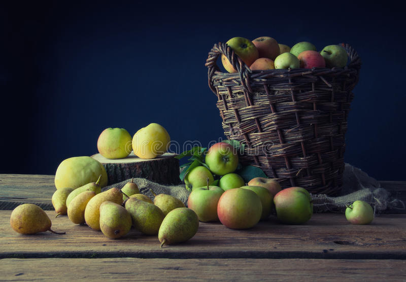 Wild apples and pears in basket stock photos