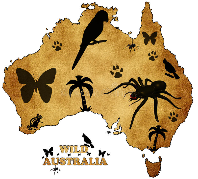 Download Wild Australia stock illustration. Illustration of melbourne - 23537628