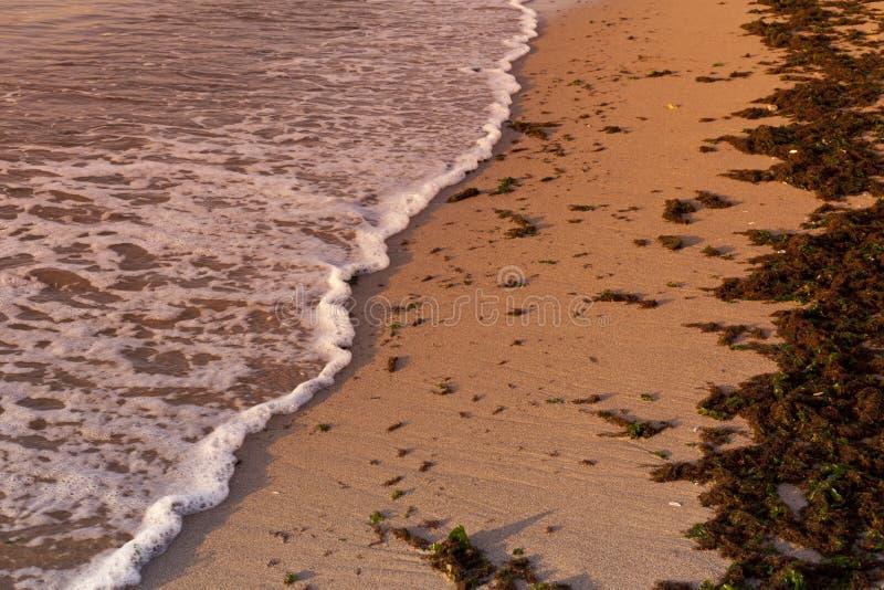 Wild beach. A quiet wave on a beach sand stock photos