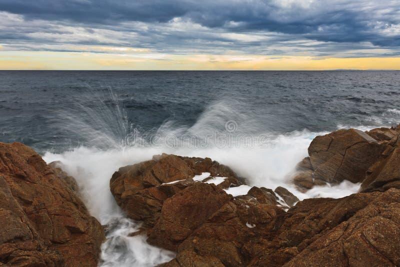 Download Wild beach stock image. Image of shore, wave, seashore - 26643027