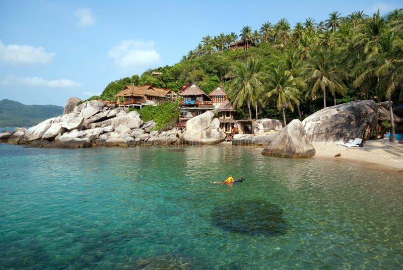 Wild beach bungalow stock photography