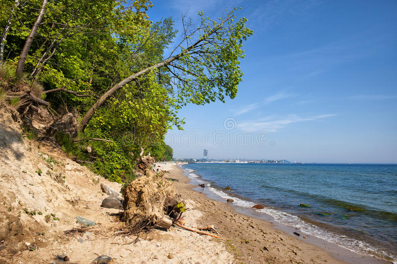 Wild Beach in Gdynia at Baltic Sea royalty free stock images