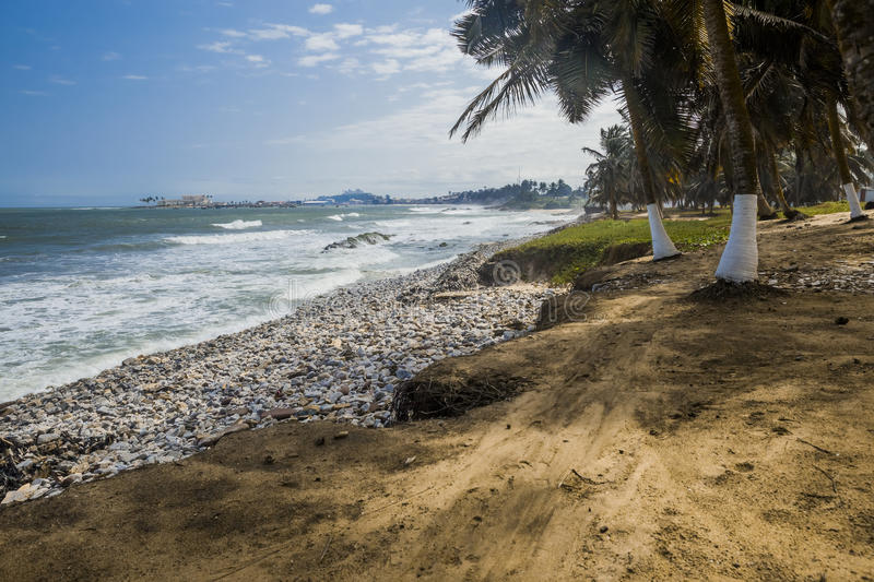Wild beach in Ghana. Wild beach and sea shore in Ghana. Coconut trees, roots and stones on a foreground. Elmina Castle on a background. Heavy sea and blue sky royalty free stock photos