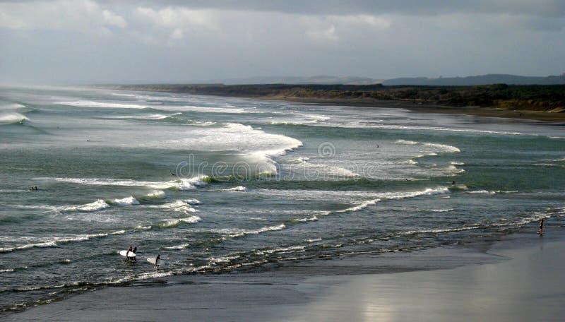 Wild beaches of New Zealand stock photos