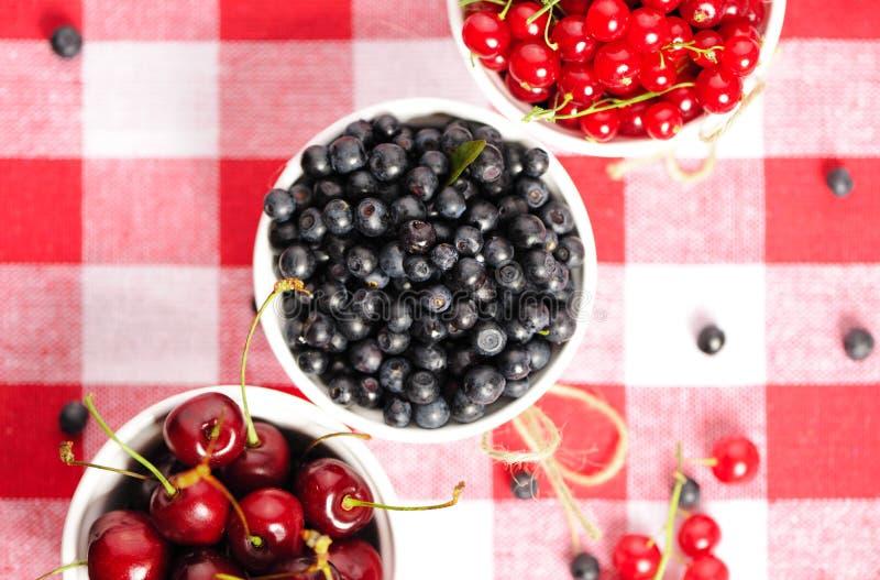 Download Wild berries in bowls stock photo. Image of blackberry - 26535104