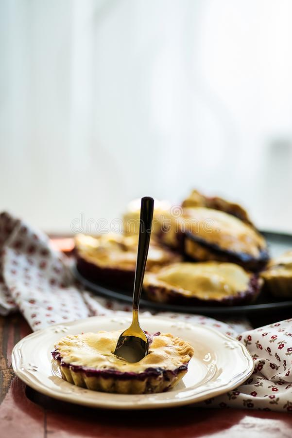 Wild berries pies stock image