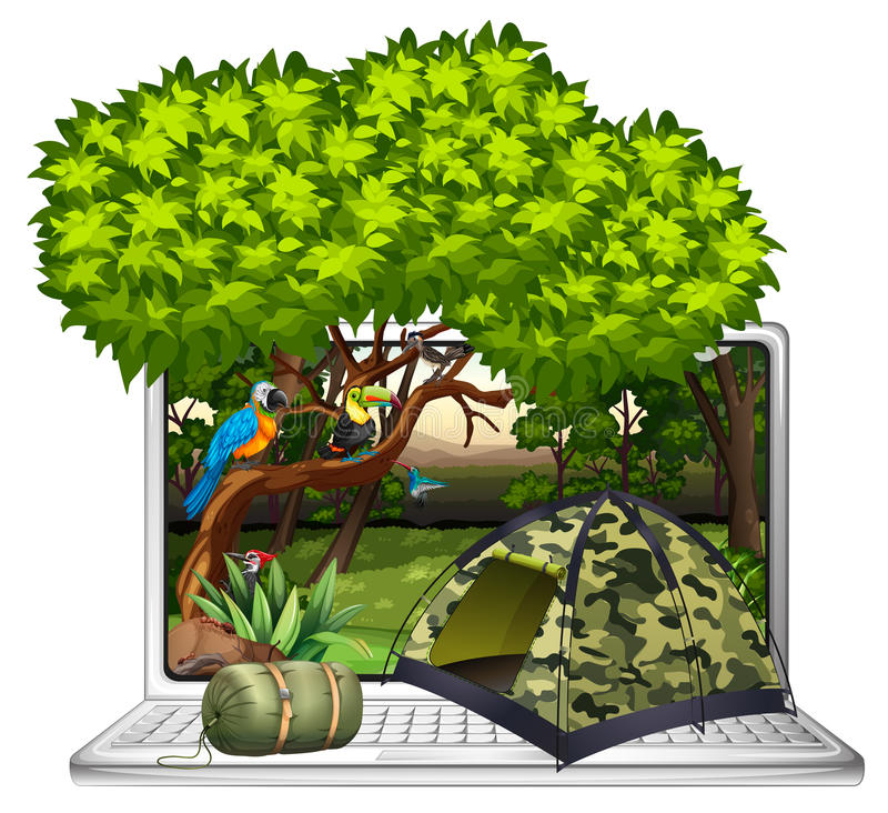 Wild birds and camping site on computer screen royalty free illustration