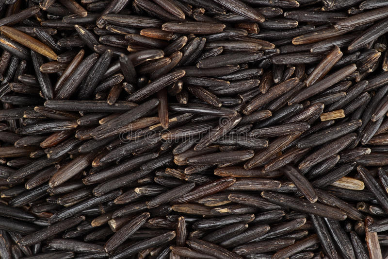 Wild black rice background