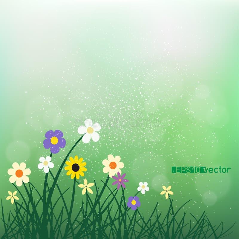 Wild bloemen en gras op onduidelijk beeld groene bokeh royalty-vrije illustratie
