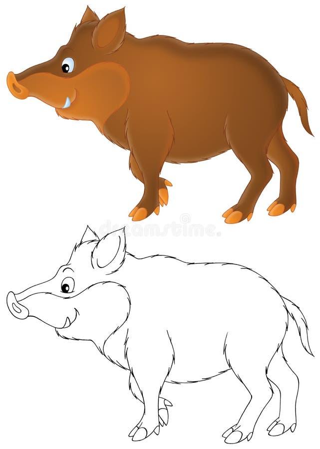 Download Wild boar stock illustration. Image of outlined, life - 19698293