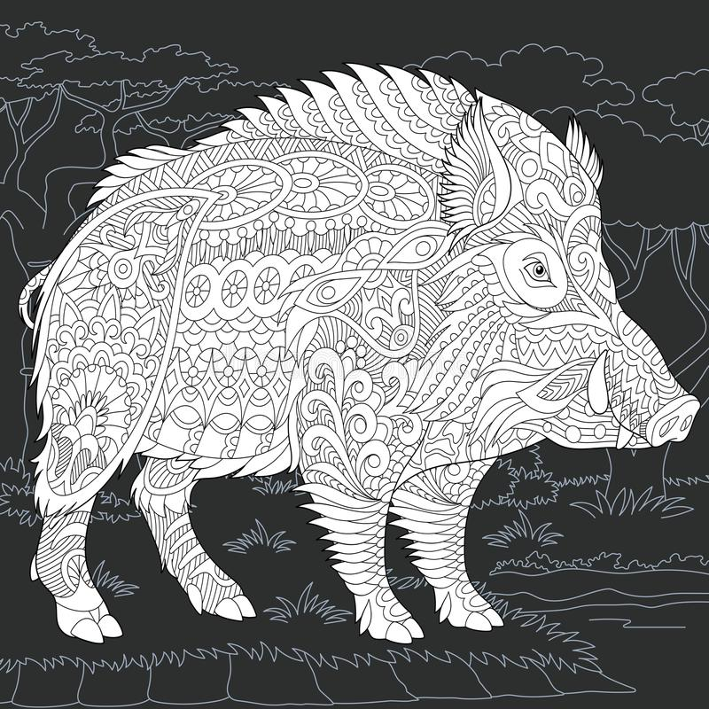 Wild boar in black and white style. Wild Boar drawn in line art style. 2019 Chinese New Year symbol. Coloring book. Coloring page. Zentangle vector illustration royalty free illustration