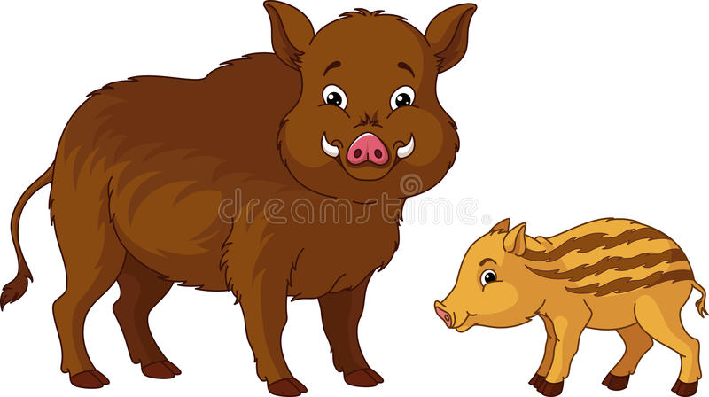 Wild Boar. With her cub royalty free illustration