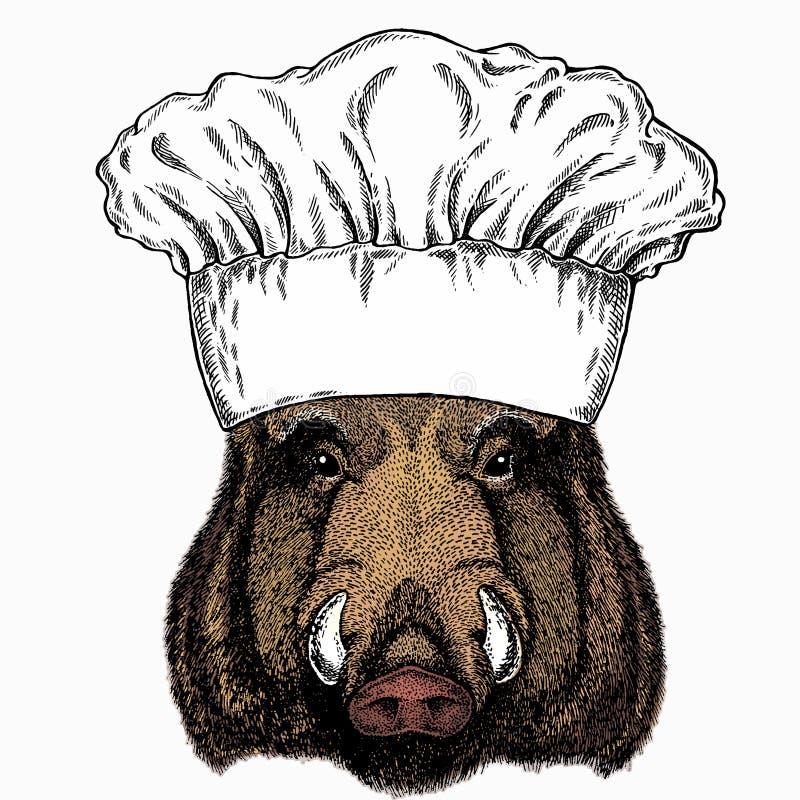 Free Wild Boar, Hog, Pig. Chef Cook Hat. Restaurant Logo. Animal Head, Portrait Stock Photo - 204570720