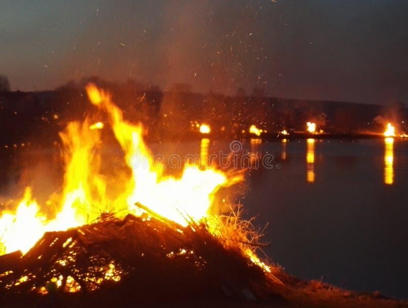 wild brand arkivbilder