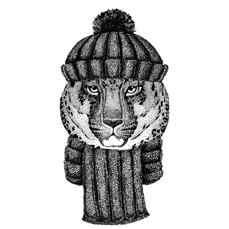 Wild cat Leopard Cat-o`-mountain Panther Cool animal wearing knitted winter hat. Warm headdress beanie Christmas cap for stock illustration