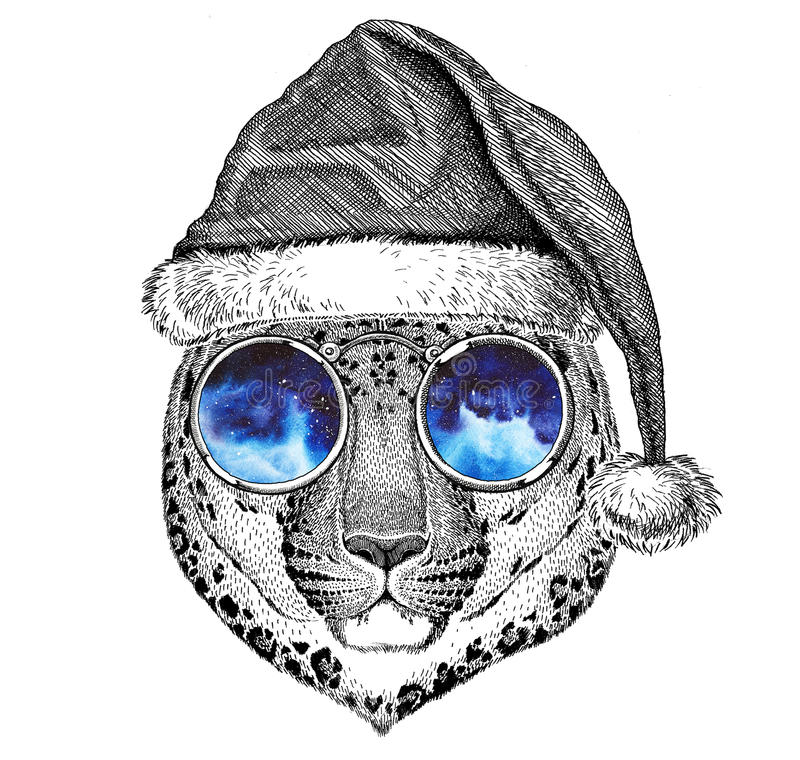 Wild cat Leopard Cat-o`-mountain Panther wearing christmas hat New year eve Merry christmas and happy new year Zoo life. Wild animal wearing christmas hat New stock illustration
