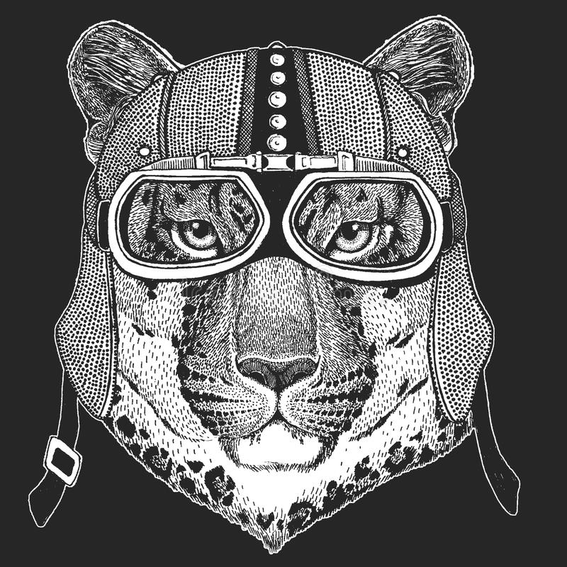 Leopard, wild cat, panther, puma, jaguar. Vintage motorcycle hemlet. Retro style illustration with animal biker for vector illustration