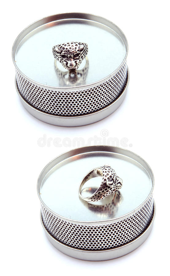 Wild Cat Ring on Fancy Display. Wild cat rin sits on fancy pattern steel display isolated on white in side and front view royalty free stock images
