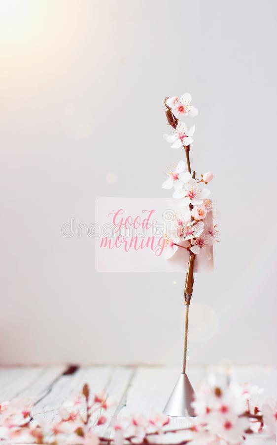 Wild cherry flowers and note holder with `Good morning` text stock photography