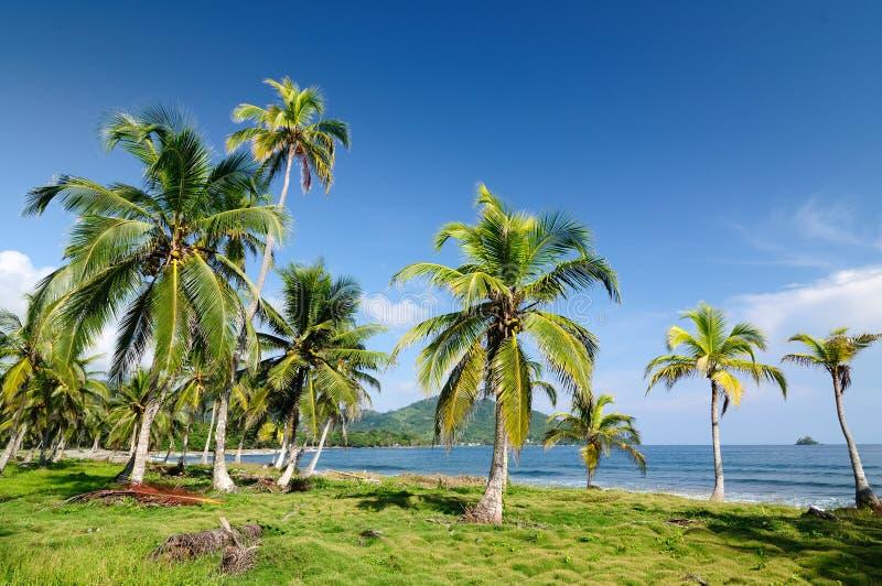Download Wild Colombian Caribbean Coast Near Capurgana Stock Photo - Image: 28332502