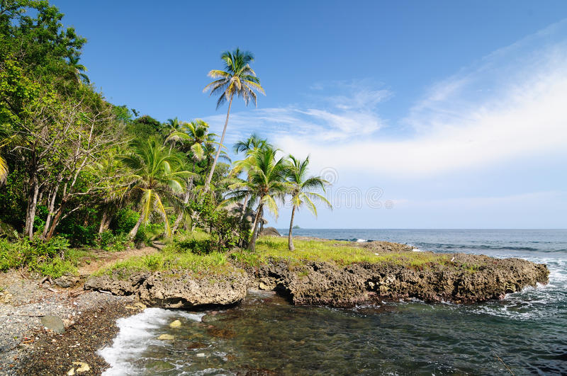 Download Wild Colombian Caribbean Coast Near Capurgana Stock Photo - Image of colombian, palm: 28332532