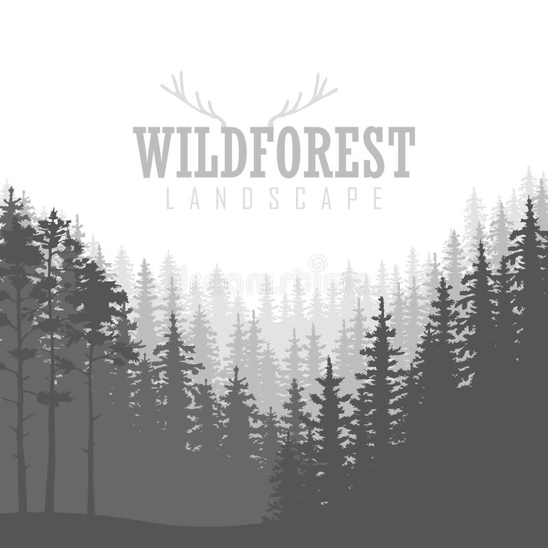 Wild coniferous forest background. Pine tree, landscape nature, wood natural panorama. Outdoor camping design template. Vector illustration vector illustration