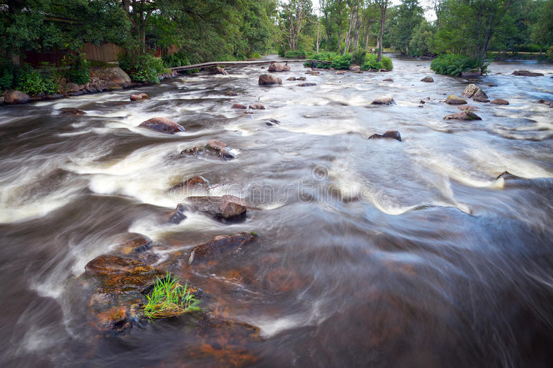 Wild creek cascades in Sweden royalty free stock image