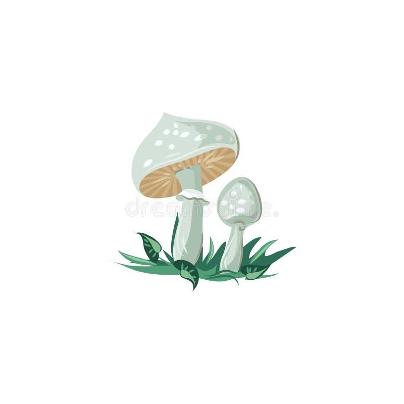 Death cap mushrooms vector illustration in flat cartoon style. royalty free illustration