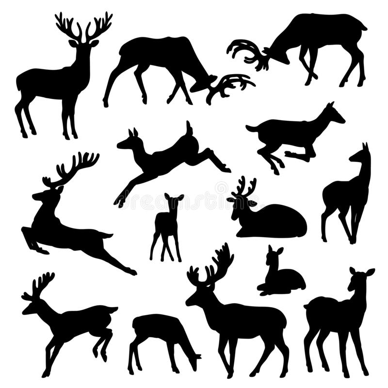 Wild deer silhouette vector set males and females with babies in different poses illustrations isolated on white stock illustration