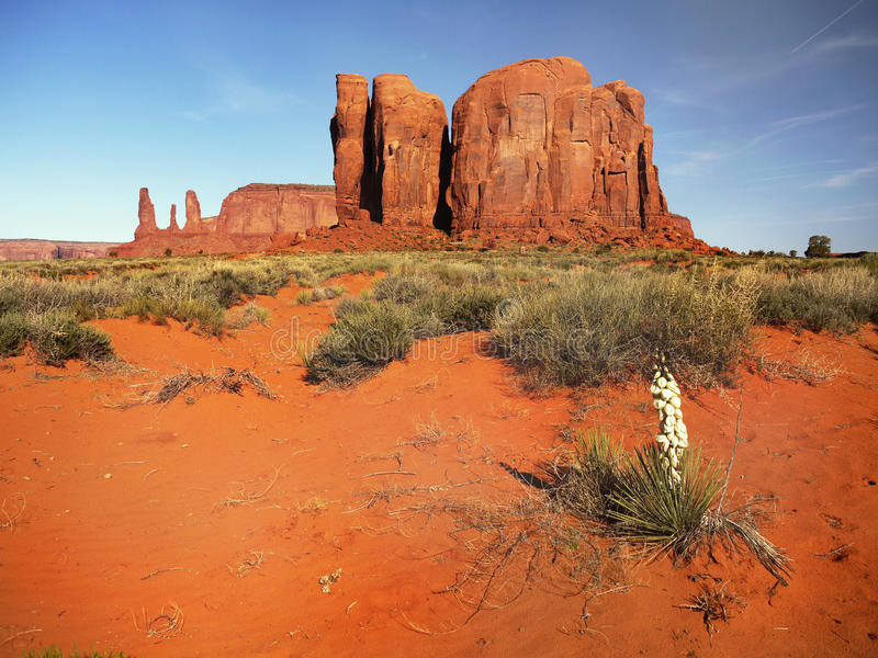 Wild desert landscape, Monument Valley. Amazing wild red desert landscape - Monument Valley, Indian Navajo Tribal Park. Utah - Arizona stock photos