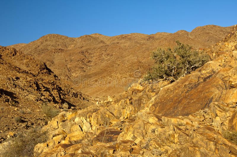 Download Wild Desert-like Landscape In The Richtersveld Stock Photo - Image of desertscapes, mountainous: 34216156