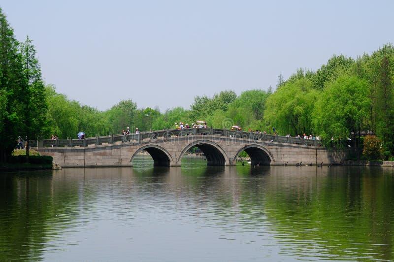Wild Dierlijk het Parkbrug en Meer van Shanghai royalty-vrije stock foto