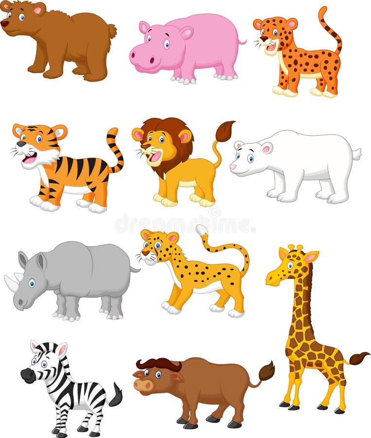 wild djur tecknad film vektor illustrationer