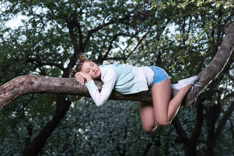 Wild fatigue. Beautiful young woman sleeping on a tree branch. Keeps her hands under her head. Short shorts. Sleepy background royalty free stock photo