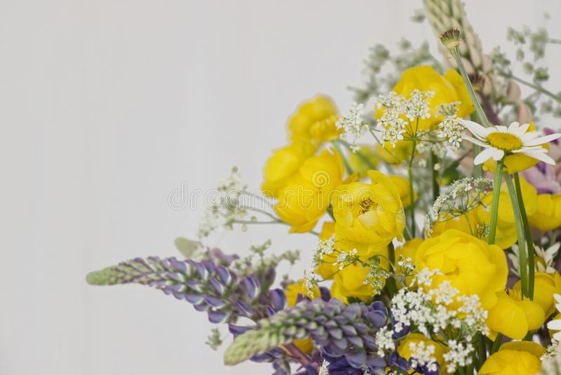Wild flower bouquet on white background. Yellow Wild flower bouquet on white background royalty free stock image