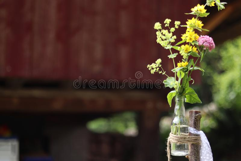 Wild flowers on a bottle which is tied on to a stick. Wedding decoration stock photography