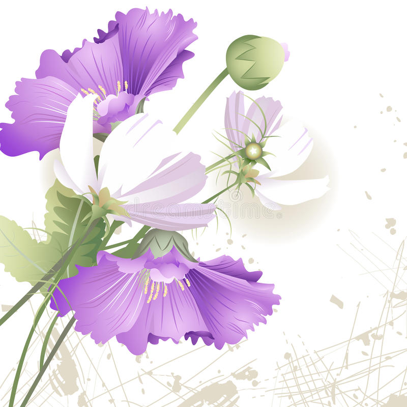 Wild flowers in color vector illustration