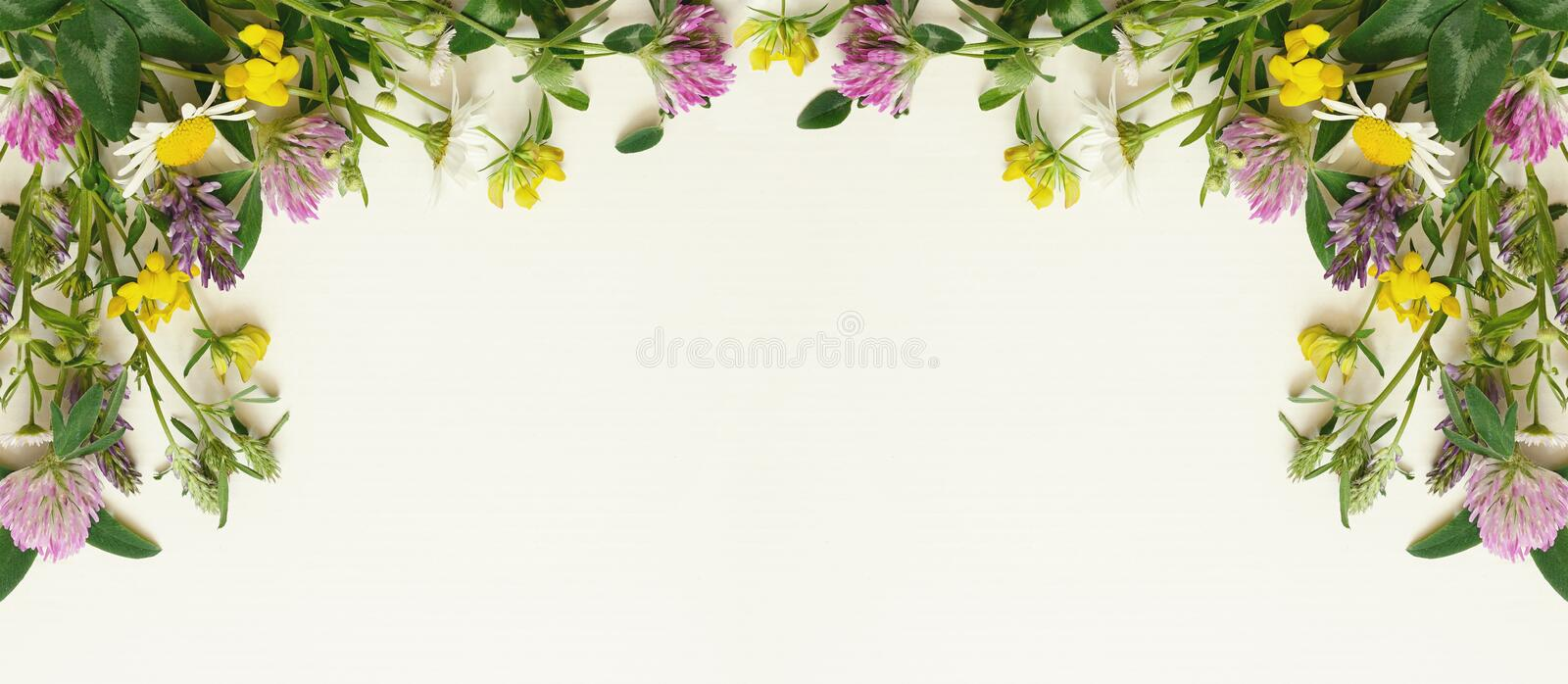 Wild flowers frame stock photo