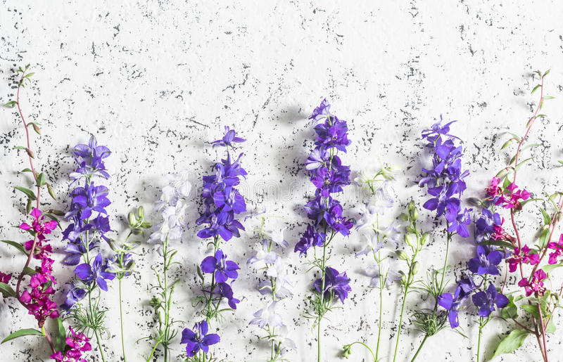 Wild flowers light background. Free space for text, top view royalty free stock photo