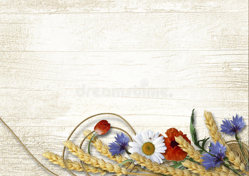 Wild flowers with spikelets on a vintage wooden background stock photography